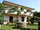 foto 1 di All'ombra del Fico - Appartamento Grande Casa Vacanze a Santa Maria di Castellabate