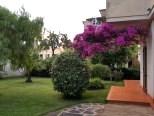 foto 1 di All'ombra del Fico - Appartamento Medio Casa Vacanze a Santa Maria di Castellabate
