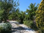 foto 9 di Il Covo del Sole Casa Vacanze a Santa Maria di Castellabate